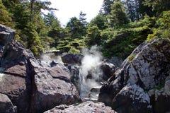 在温泉城小海湾的通入蒸汽的热量水在Tofino,加拿大附近 免版税图库摄影