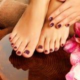 在温泉沙龙的女性脚在修脚做法 免版税库存图片