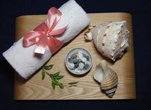 在温泉的芳香疗法与桃红色毛巾、绿色叶子、蜡烛和壳 免版税库存图片