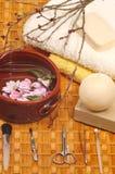 在温泉的蜂蜜肥皂 免版税库存图片