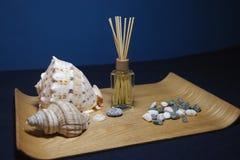 在温泉石头和壳的芳香疗法 免版税库存照片