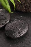 在温泉石头的绿色叶子黑表面上 免版税库存图片