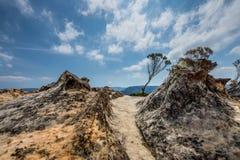 在温特沃思附近的林肯的岩石在蓝山山脉, NSW落, 免版税库存图片
