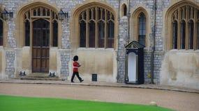 在温莎城堡的皇家卫兵 库存图片