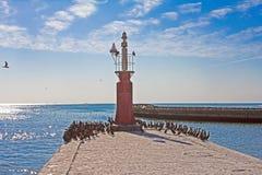 在港口墙壁,西开普省,南非上的红色烽火台 库存照片