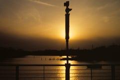 在港口的散开的太阳 免版税库存图片
