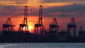 在港口的日落 免版税库存图片