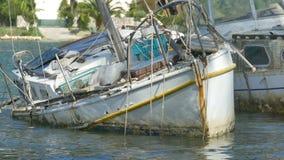 在港口的游艇击毁 股票录像