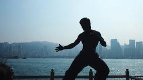 在港口附近的李小龙剪影 免版税库存图片