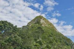 在港塔拉纳基的Paritutu岩石 免版税库存图片