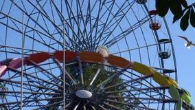 在游乐园的弗累斯大转轮行动的 影视素材