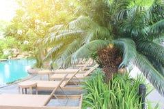 在游泳池旁边的松弛藤条椅子与大棕榈树 免版税库存图片