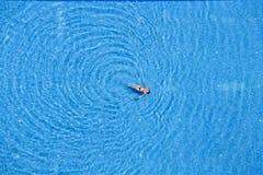 在游泳池的女子游泳在旅馆 顶视图 火鸡 图库摄影