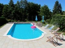 在游泳池的桃红色火鸟 图库摄影