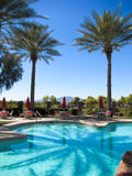 在游泳池的棕榈树反射 图库摄影