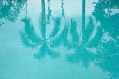 在游泳池的热带树反射 图库摄影