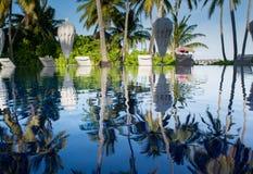 在游泳池的热带棕榈树反射在马尔代夫 免版税库存图片