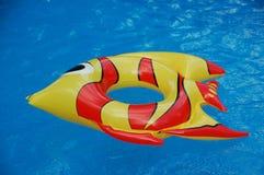 在游泳池的膨胀的玩具 库存照片