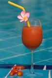 在游泳池的西红柿汁 库存图片