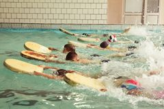 在游泳的技能教训内的小学孩子 免版税库存图片
