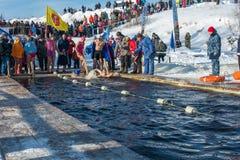 在游泳的竞争在冰水,在节日冬天fu 库存照片