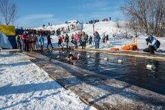 在游泳的竞争在冰水,在节日冬天fu 免版税库存照片