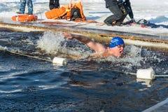 在游泳的竞争在冰水,在节日冬天fu 库存图片