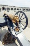 在游行正方形的老军用大炮 免版税库存照片