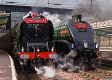 在游行的蒸汽火车 免版税图库摄影