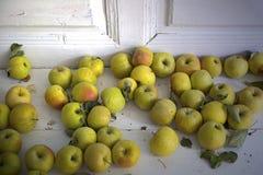 在游廊的苹果 库存图片