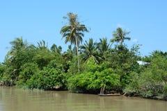 在湄公河三角洲,越南的农村场面 库存照片