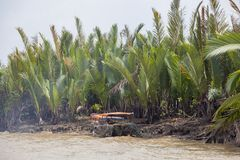 在湄公河的小船在越南 库存照片