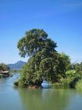 在湄公河 库存图片