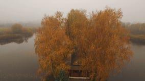 在湖中间的童话房子秋天有雾的早晨天线的 股票视频