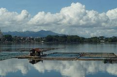 在湖中间被修造的竹小屋 库存图片
