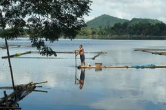 在湖中间被修造的竹小屋 图库摄影