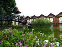 在湖前面的小屋 免版税图库摄影