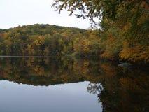 在湖反映的五颜六色的森林 免版税库存照片