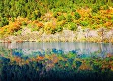 在湖反映的五颜六色的秋天森林 惊人的横向 免版税库存照片