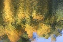 在湖反映的秋天森林 库存照片