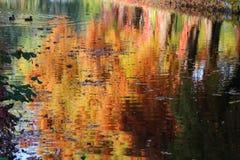 在湖反映的秋天颜色 库存图片