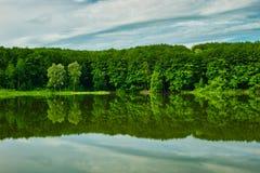 在湖反映的绿色森林 库存照片