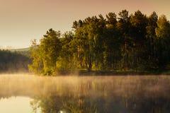在湖和山反映的森林 风景在黎明 库存图片