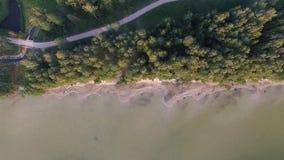 在湖和森林的缓慢的垂直着陆 股票视频