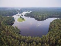在湖和森林的鸟瞰图在白俄罗斯 免版税库存照片