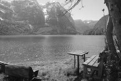 在湖和自然背景附近的黑白偏僻的椅子 免版税库存照片