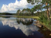 在湖在森林里 免版税库存照片