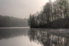 在湖小山岸的树 库存照片