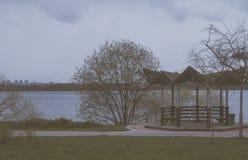 在湖岸的木溢出 免版税库存照片