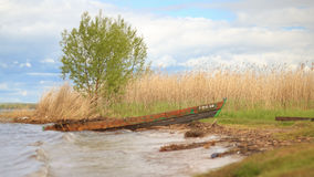 在湖岸的被放弃的小船  图库摄影